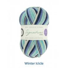 Load image into Gallery viewer, Winter Icicle by West Yorkshire Spinners and Winwick Mum at Eskdale Yarns