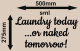 LAUNDRY TODAY INSPIRATIONAL QUOTE 2 WALL ART STICKER XLRG VINYL DECAL - Vinyl Lady Decals  - 6