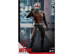 Ant-Man Hot Toys 1:6 Scale Figure