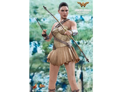 Hot Toys Wonder Woman 1/6  - (Training Armor Version)
