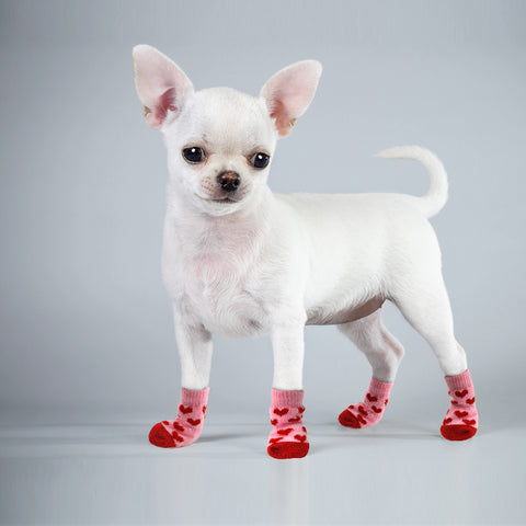 Winter Pet Shoes