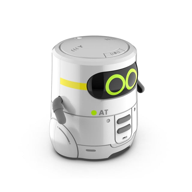 Educational and Interactive Toy Robot