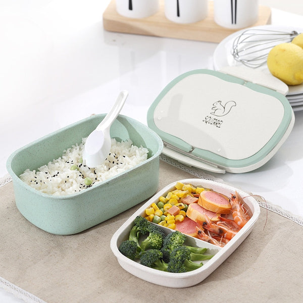 Bento Box Food Container
