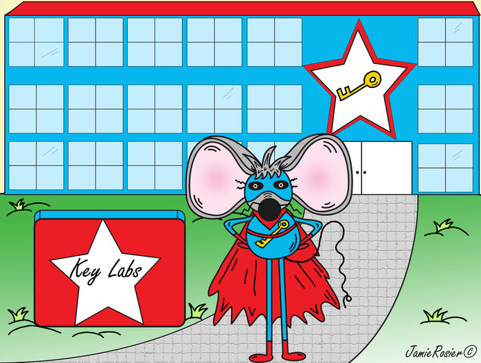 Link The Superhero Mouse With Superpowers Drawn by Artist Jamie Rosier | Illustrations Drawings Cartoons Adobe Illustrator