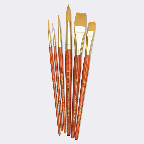 Princeton 6 Paint Brush Set (9153) - Street Lab UK