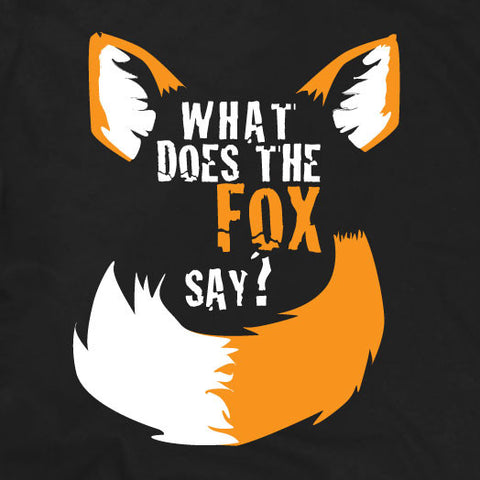 What does the fox say music video T-Shirt