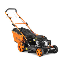 "Load image into Gallery viewer, New Redback 6 hp 21"" Self-Propelled OHV 173 cc Lawn Mower"
