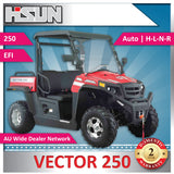 New Hisun 250 Vector Utility Vehicle includes Windscreen, Roof and Alloy Wheels