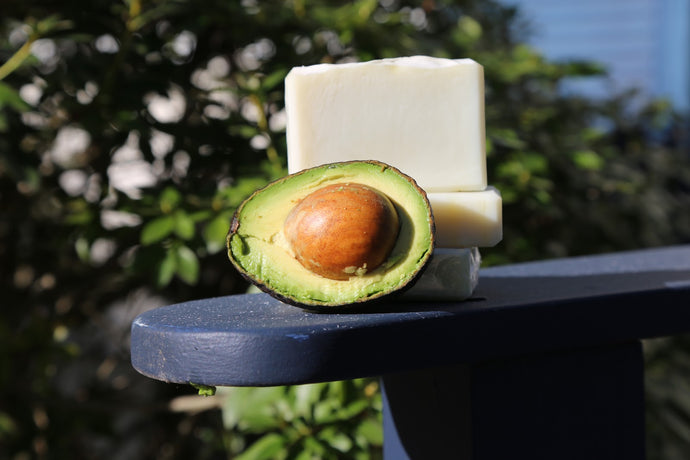 Avocado/Shea Butter