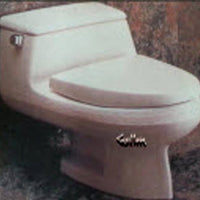 Seat for American Standard Ellisse one-piece - This Old Toilet