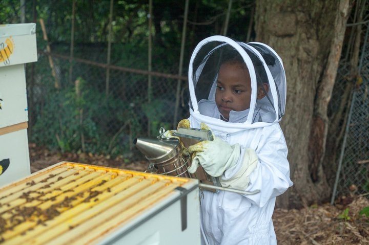 Black Beekeepers Are Reclaiming Vacant Lots In Detroit To Create Bee Farms