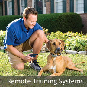 Remote Training Systems