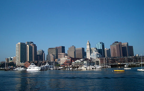 Boston Viewed from the Harbor