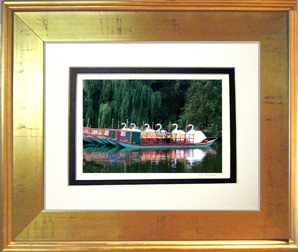 Swan Boats at the End of the Day Matted Print