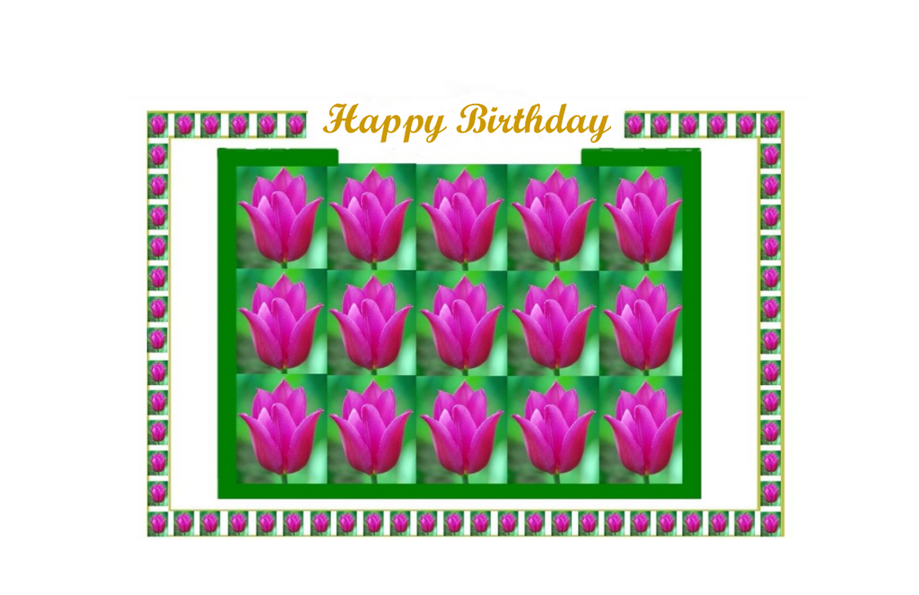 Happy Birthday, Box of Tulips
