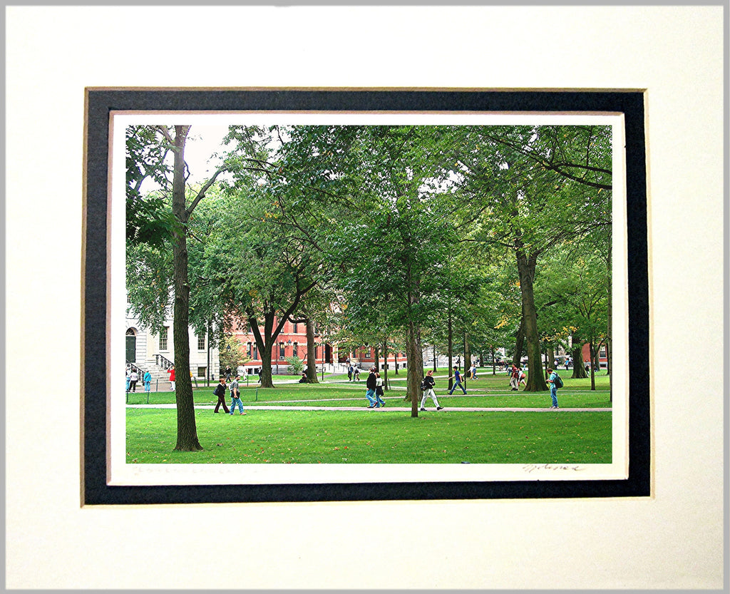 Harvard Yard Matted Print