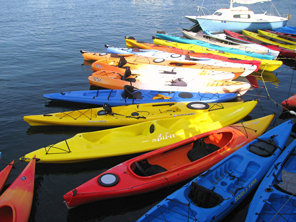 Kayaks (Greeting Card)