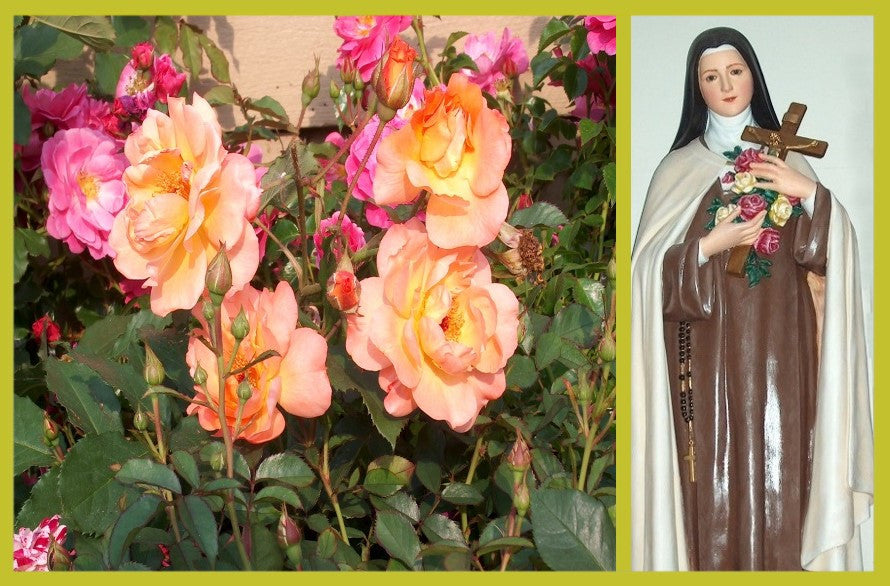 Saint Theresa of Lisieux
