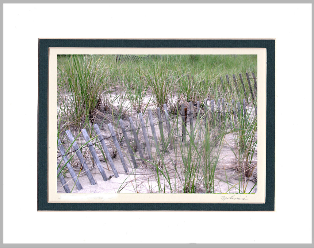 Sand Dune, Cape Cod Matted Print