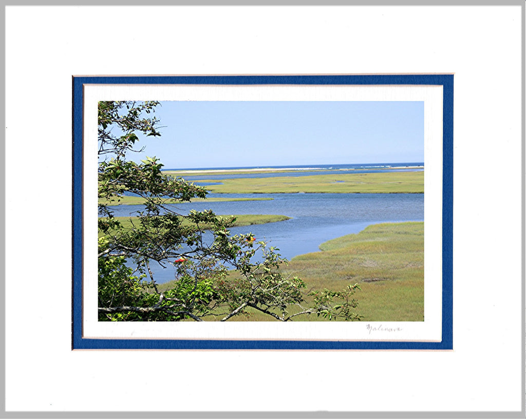 Sea Marshes Matted Print