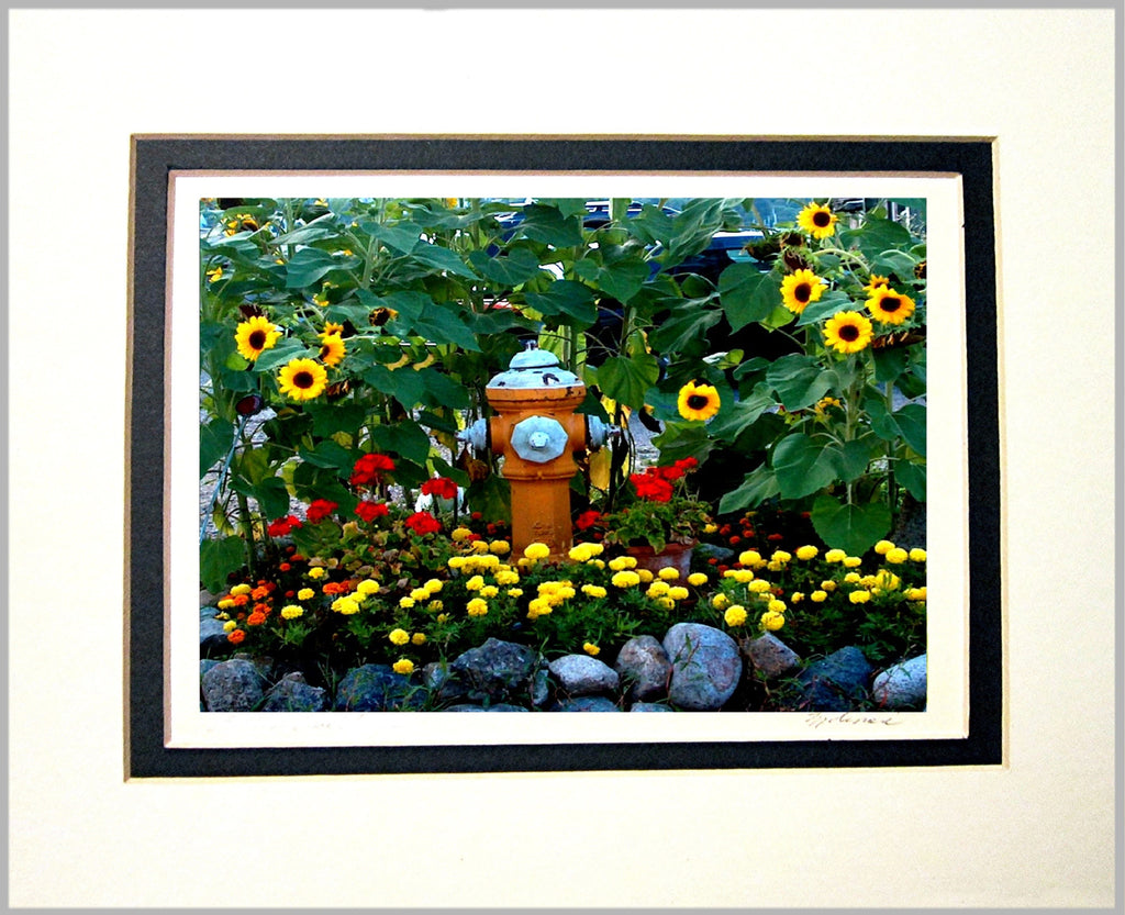 Sunflowers with Hydrant Matted Print