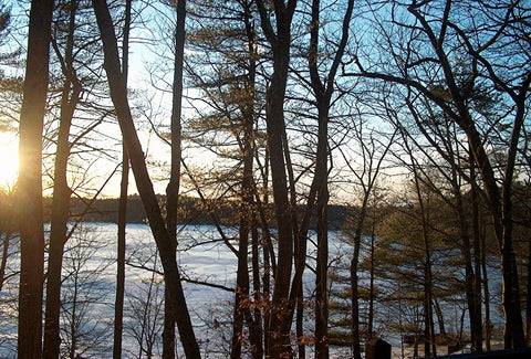 Walden Pond in Winter