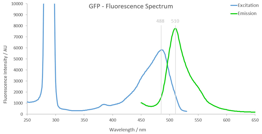 GFP Fluorescence Spectrum
