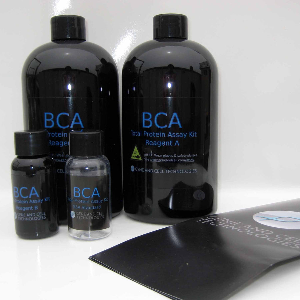 BCA Total Protein Assay Kit