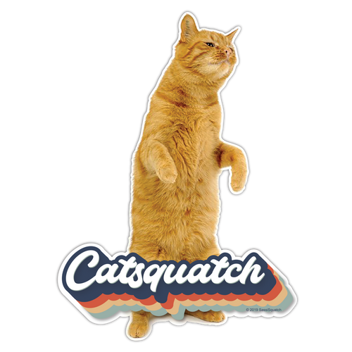 Wholesale 25pack -- Catsquatch
