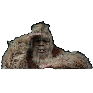 "WHOLESALE 10pack --  A ""PEEK 'A' BOO"" SQUATCH!"