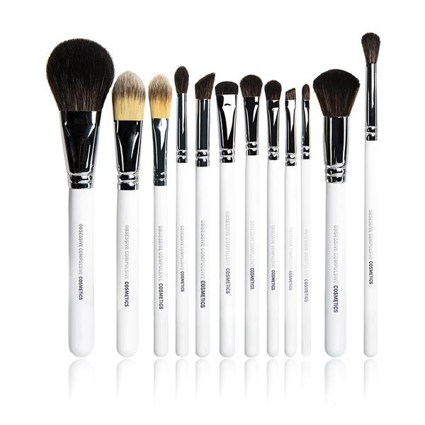 BRUSH BUNDLE- All 12 Brushes (PRO)