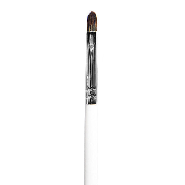 BRUSH 010- PRECISION LIP BRUSH (PRO)