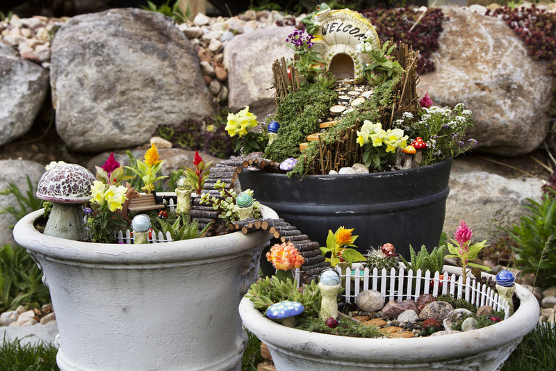 Away With The Fairies: What is a Fairy Garden?