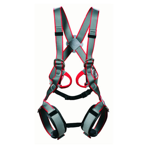 DMM Tom Kitten Full Body Harness-Little Adventure Shop