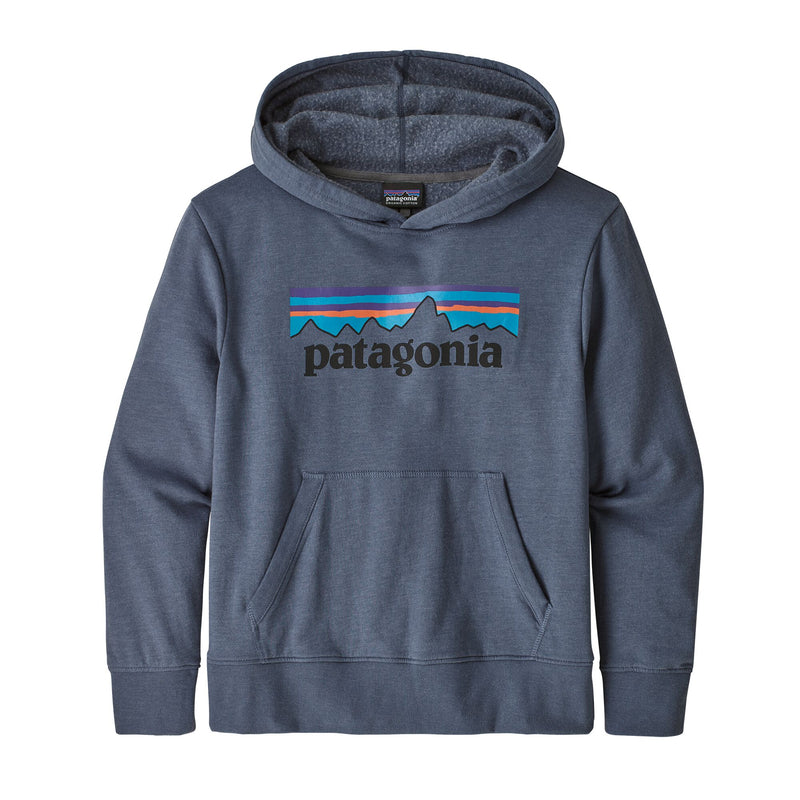 Patagonia Kids Lightweight Graphic Hoody (Dolomite)-Little Adventure Shop