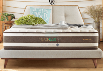 MaxCoil Forrest Eco Organic Cotton II Pocketed Spring Mattress (Memory Foam)-Maxcoil-Sleep Space