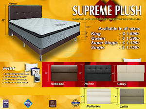 MaxCoil Ortho Supreme Plush Pocketed Spring Mattress & Bed Bundle-Maxcoil-Sleep Space
