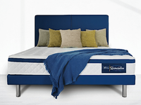Viro Spinesation Mattress + Divan Bed Bundle Promo-Viro-Sleep Space