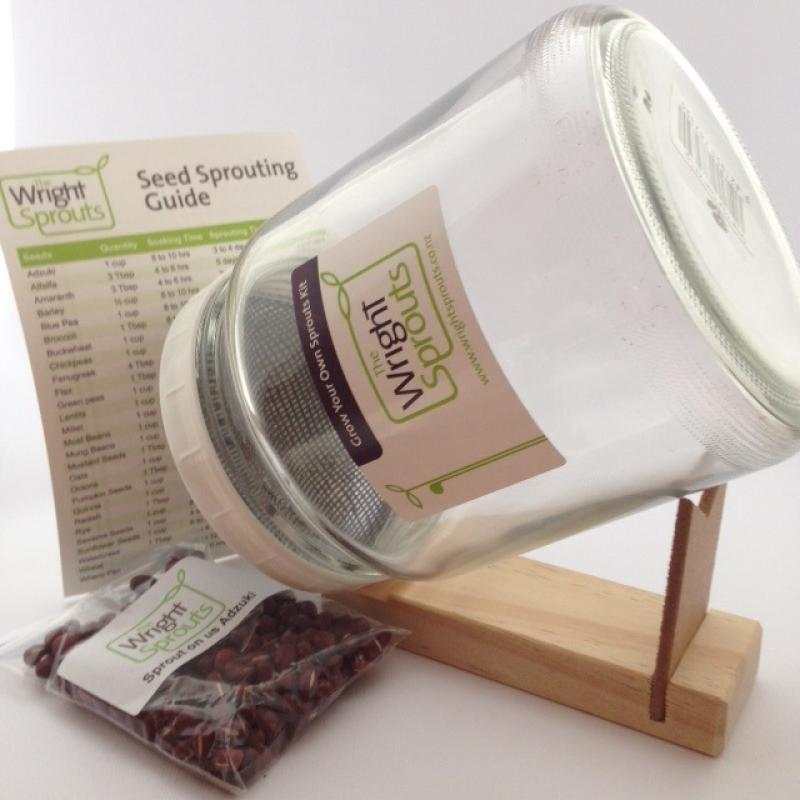 Grow Your Own Sprouts Kit - Large Jar - Growing Potential