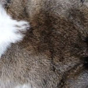Natural Rabbit Pelt 2 Colors