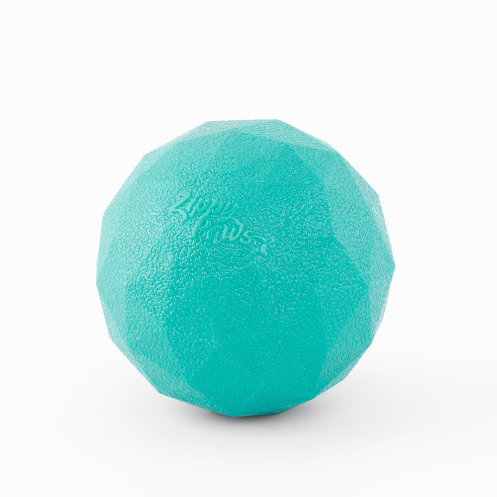 ZippyTuff Waggle Ball Toy