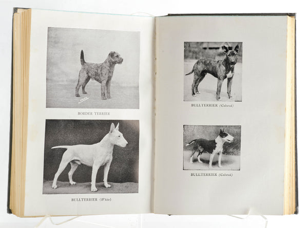 "Inside Detail ""The Complete Dog Book"""