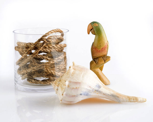 Vintage Carved Parrot, Shell, Rope