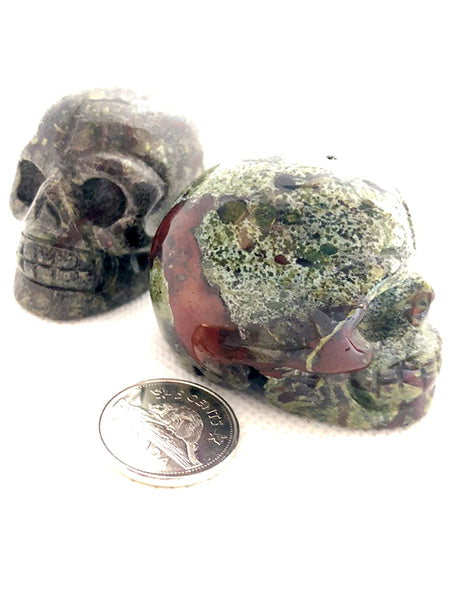 Dragon's Blood Skull