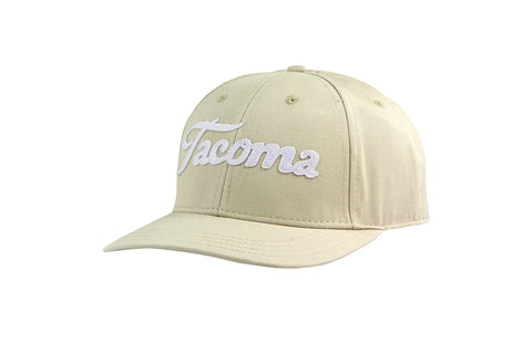 ELEMENT ICON MESH CAP