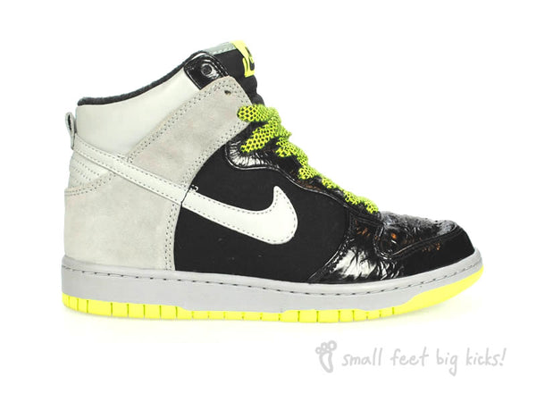 Nike Dunk Zoom High Premium