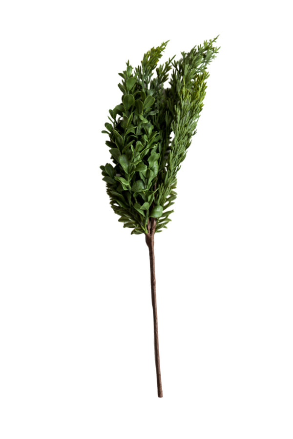 Boxwood and Pine Branch