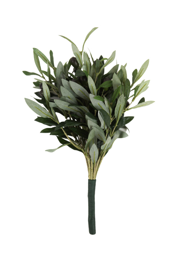 Olive Bush Single Stem