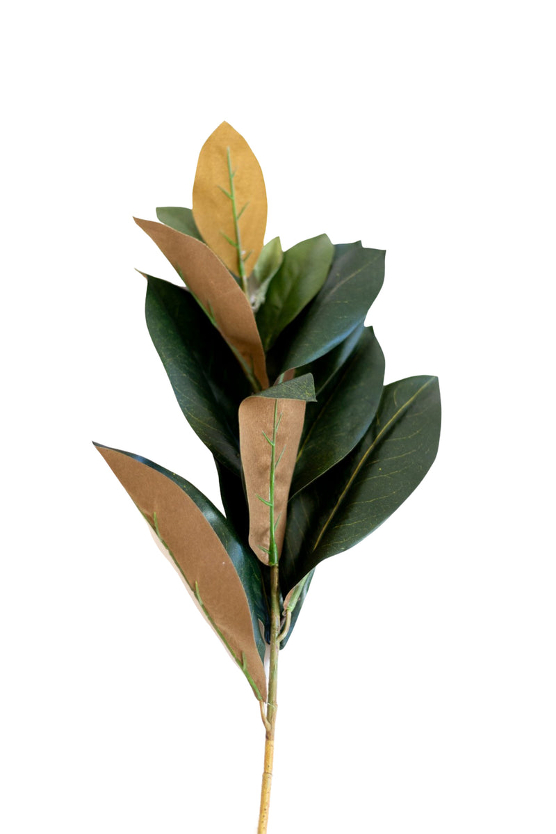 "33"" Magnolia Leaves Spray"