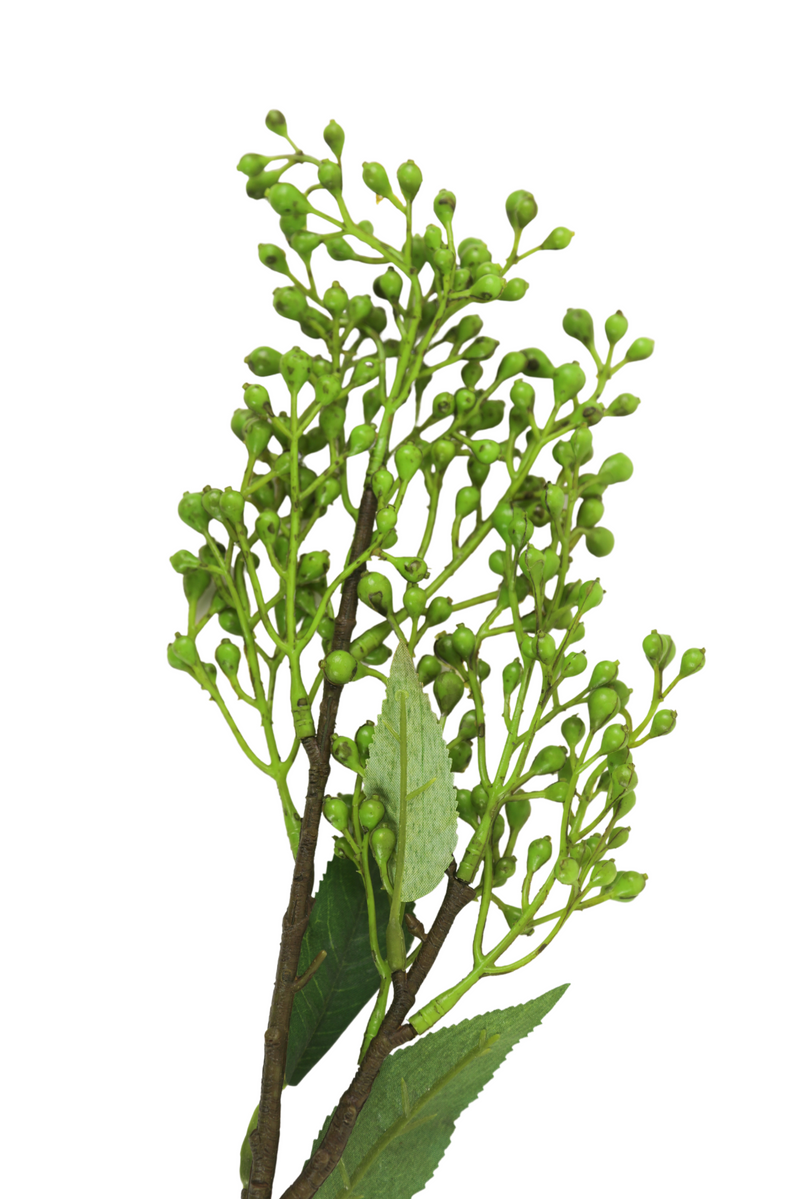 Green Berry Stems